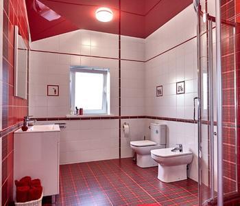 Потолок красный цвет в ванную